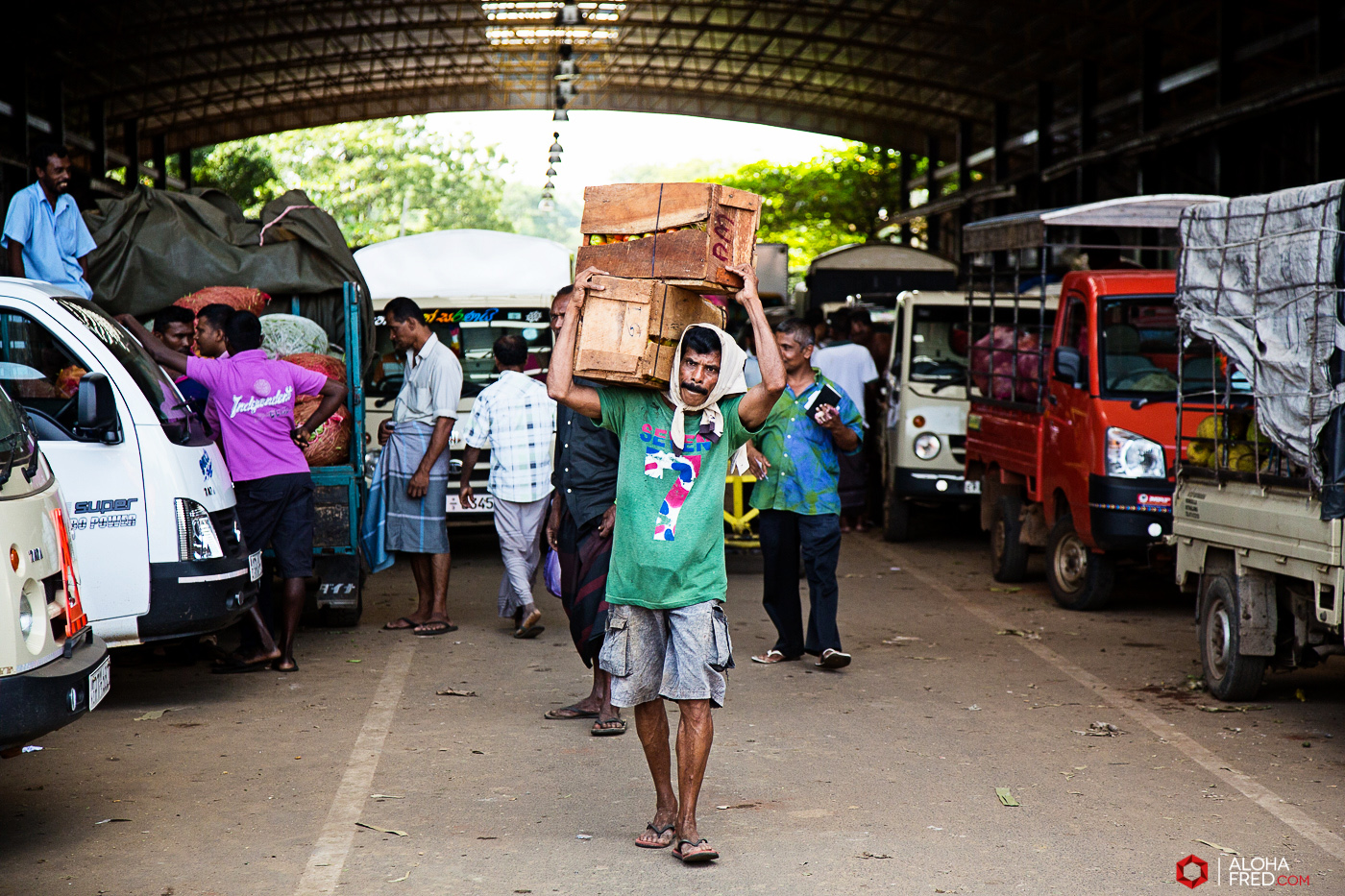 0020 - Sri Lanka - CP1A6534