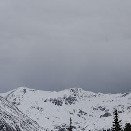 by Snow Losh - Landscapes Mountains & Hills
