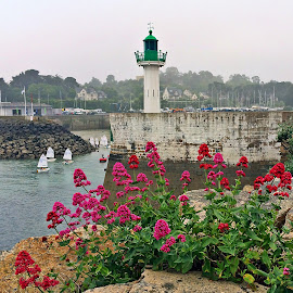 Port by Dobrin Anca - Instagram & Mobile iPhone ( port, waterscape, sea, brittany, flower )