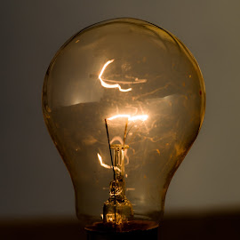 The Light by Naveen Joyous - Artistic Objects Other Objects ( bulb, glass, object, close up, light )