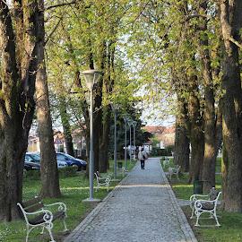 by Antonio Kovačić - City,  Street & Park  City Parks