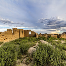 Fort Churchill, Nevada by Lee Molof - Landscapes Deserts