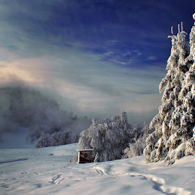 Foggy day by Tamas Valentin - Landscapes Mountains & Hills ( hills, winter, nature, landscape )