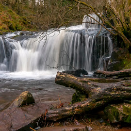 Plunge Pool by Pete Watson - Landscapes Mountains & Hills ( water, countryside, stream, brecon beacons, cataracts, brook, wales, blaen y glyn, waterfall, woods, wooded valley, © pete watson photography, talybont forest, december, woodland, river caerfanell, white water, river )