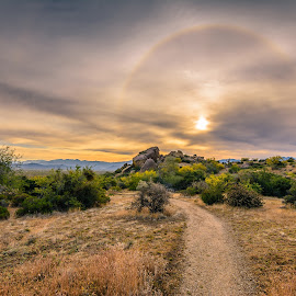 Desert Halo by Ralph Resch - Landscapes Prairies, Meadows & Fields ( desert )