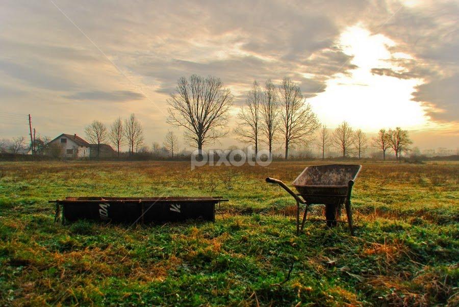 Good morning by Mirna Abaffy - City,  Street & Park  Vistas