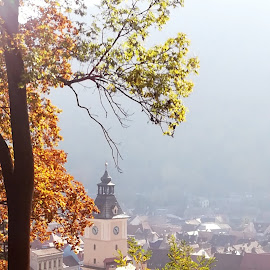 Brasov City/Romania by Cristi Nitu - City,  Street & Park  Historic Districts