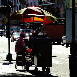 Hot Dogs by David Walters - People Street & Candids ( colors, vendor, street, sony hx400v, city )