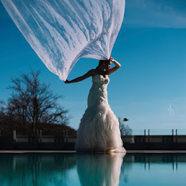 Bride and the veil by Jovan Gojkovic - Wedding Bride ( reflection, pool, wedding, wedding dress, destination wedding, bride )