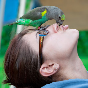 Just give me a kiss! by Muzo Gul - Animals Birds