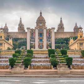 National Art Museum by Dragica Šilak - Buildings & Architecture Public & Historical ( museum, barcelona )