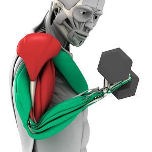 MuscleMatics For PC (Windows & MAC)