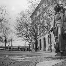 Hi Lincoln by Adhi Rachdian - City,  Street & Park  Street Scenes ( cityscapes, streetphotography, europe, park, black and white, street, bw, cityscape, city park, street photography, blackandwhite, statue, parks, street scenes )