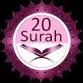 App Twenty Surahs Of Quran version 2015 APK