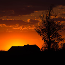 Sunset!! by Wilma Michel - Landscapes Sunsets & Sunrises