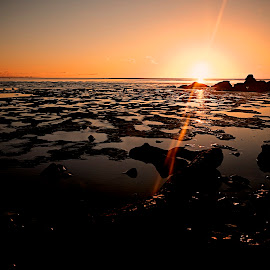 Silverdale sunset. by Bill Avergo - Landscapes Sunsets & Sunrises ( sands, silverdale, sunset, shoreline, sea, beach )