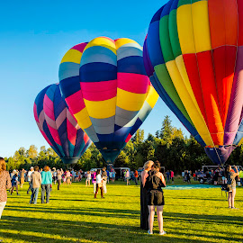 Hot air Balloons by Chris Bartell - Transportation Other ( 2017, oregon, tigard, baloons, june, morning, hot air balloons, landscape )
