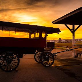 Buggy at Sunrise by Ed & Cindy Esposito - Transportation Other ( amish, buggy, pa, wheels, pennsylvania, sunrise, lancaster, morning )
