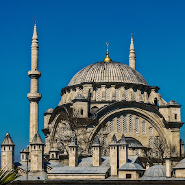 mosque in istanbul by Peter Schoeman - Buildings & Architecture Places of Worship ( religion, building, sky, blue, mosque, asia )
