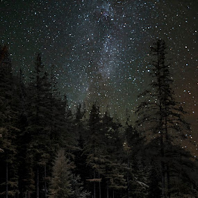 Cabin in the night by Kam Mccallister - Landscapes Starscapes ( oregon, cabin, milkyway, stars, woods )