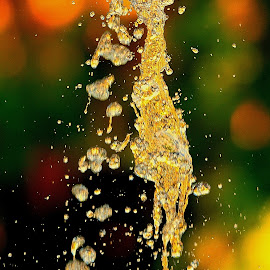 Water fountain frozen in time by Francois Wolfaardt - Abstract Water Drops & Splashes ( water, water drops, patterns, fountain, splashes, bokeh, colours )