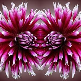 Digref 56 by Michael Moore - Digital Art Things