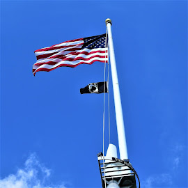 Flying High by Hal Gonzales - Artistic Objects Other Objects ( clouds, flying, flags, pole, american flag, wave )