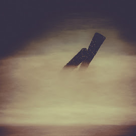 Taking on the wave by Ranjith Mehenderkar - Digital Art Things