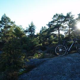 my loyal companion by Ester Ayerdi - Transportation Bicycles ( cycle, bike, transport, cycling, landscape, tour, bicycle )