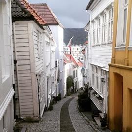 Getting lost in the cute little side streets of by Ester Ayerdi - City,  Street & Park  Neighborhoods ( Bergen, norway, visitnorway, noruega, norgefoto, visitbergen, bergenby, travel, tourism, tour, history, heritage, architecture, street, street, streetphotography, cutestreet, bergensentrum, city, norge, mittbergen )