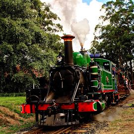 Puffing Billy by RJ Photographics - Transportation Railway Tracks ( steam train, train, narrow gauge )