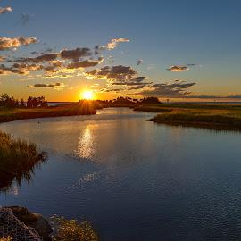 by Jan Gorzynik - Landscapes Sunsets & Sunrises ( calm, nobody, reflection, skyline, bright, ocean, landscape, coastline, sun, coast, fantasy, mirror, sky, tree, nature, sunny, dramatic, cloudy, sunshine, light, evening, water, abstract, orange, contour, heaven, twilight, sea, horizon, lake, sunlight, dusk, magic, dawn, red, blue, color, sunset, outdoor, wave, cloud, sunrise, golden, river )