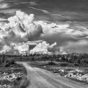 Storm front coming in  by Ernie Page - Black & White Landscapes ( dolly sods wilderness, west virginia, black and white, weather, landscape, storm,  )