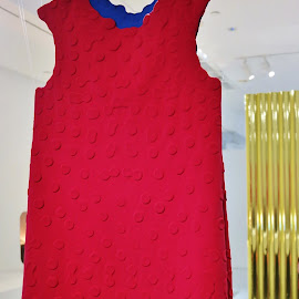 Red Dress by Koh Chip Whye - Artistic Objects Clothing & Accessories (  )