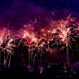 Firework by Joseph Law - Public Holidays July 4th