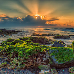 .:: Rock n R.O.L ::. by Setyawan B. Prasodjo - Landscapes Sunsets & Sunrises (  )