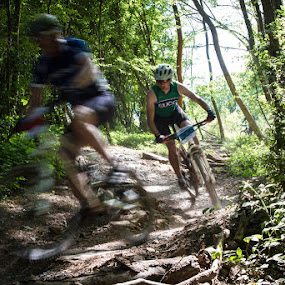 On Your Wheel by John Puddy - Sports & Fitness Cycling ( bike, speed, mountain bike, woodland, blur, motion, race )