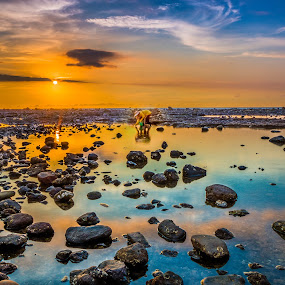 惜 by Gary Lu - Landscapes Sunsets & Sunrises ( gary lu, sunset, 惜,  )