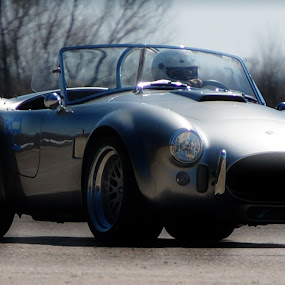 Shelby Cobra Course Race by Elizabeth Robison - Transportation Automobiles ( shelby, race, cobra )