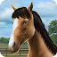 APK Game My Horse for iOS
