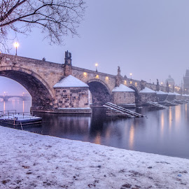 Charles Bridge in The Fog by Kratochvíl Tomáš - Buildings & Architecture Bridges & Suspended Structures