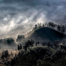 Misty storm on the Hill by Agus Sudharnoko - Landscapes Mountains & Hills