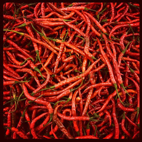 Spicy! by Steven Silman - Instagram & Mobile Instagram