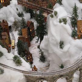 by Beth Collins - Public Holidays Christmas ( holiday, railroad tracks, columbus, winter, ohio, railroad, train, model train, tracks, miniature )