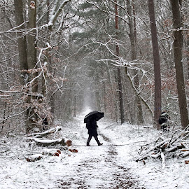Hiking by Philippe Smith-Smith - People Street & Candids ( snow, path, forest, people, hiking )
