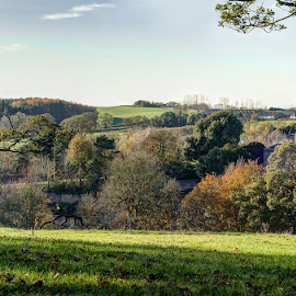 Auchincruive by Stephen Crawford - Landscapes Prairies, Meadows & Fields ( countryside, farm, adams, oswald hall, trees, workplace, auchincruive, fields, estate, relax, tranquil, relaxing, tranquility )