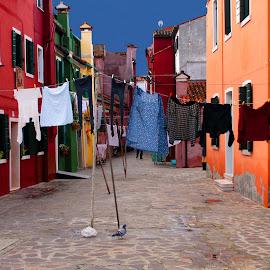 Du linge à Burano by Gérard CHATENET - City,  Street & Park  Street Scenes