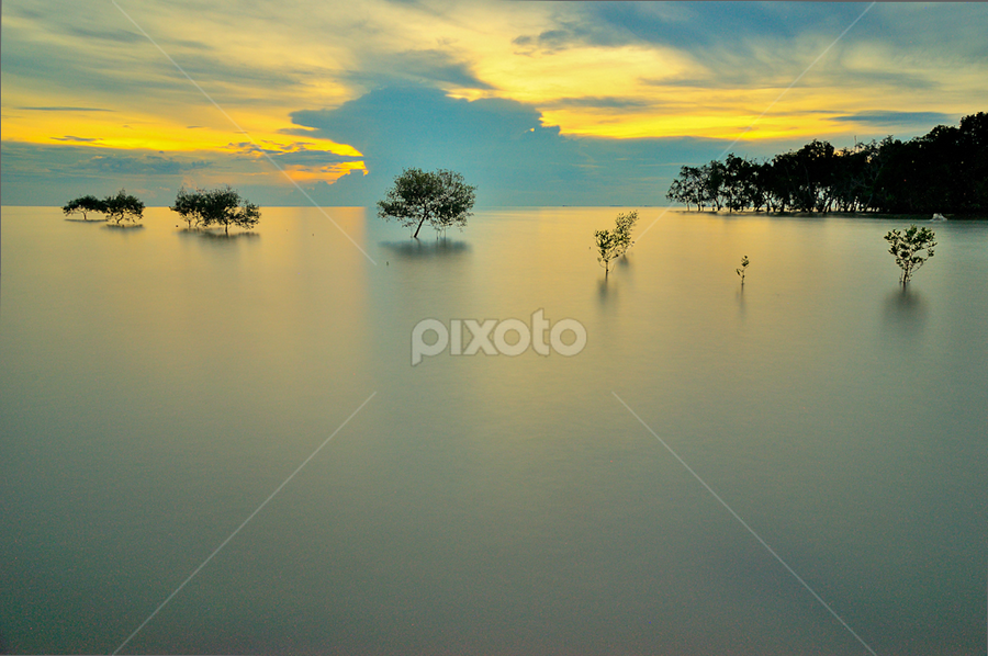 Life by Azri Suratmin - Landscapes Sunsets & Sunrises ( water, tree, pantai, azri, sunset, sea, klanang, malaysia, azrisuratmin )