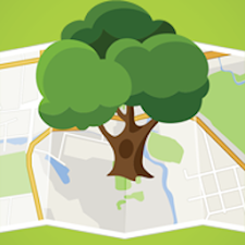 Asheville Tree Map