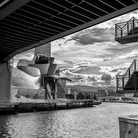 museo guggenheim y ria, Bilbao by Roberto Gonzalo Romero - Buildings & Architecture Public & Historical ( black and white, bilbao, guggenheim, museo )